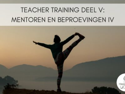 Teacher Training V