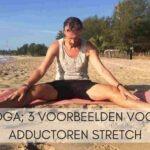 Yin Yoga; 3 voorbeelden voor een adductoren stretch