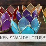 De betekenis van de Lotusbloem