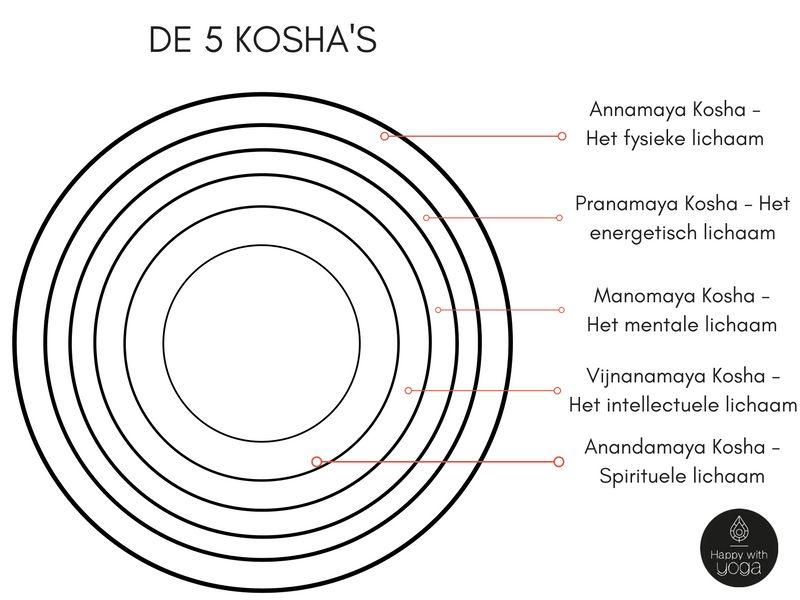 de 5 kosha's