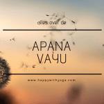 Apana Vayu handleiding – Een compleet overzicht