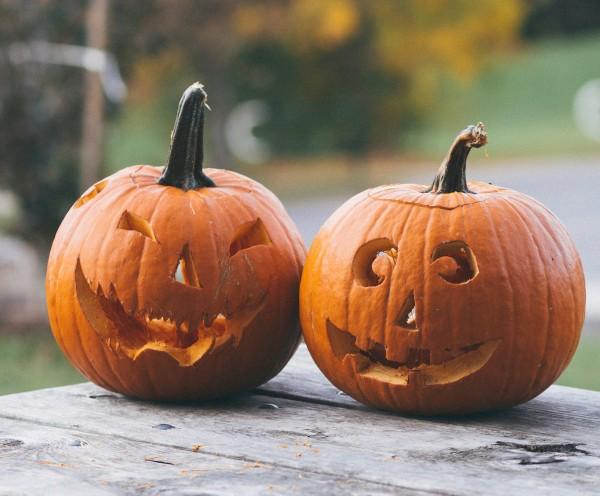 halloween-k-rbis-schnitzen-aush-hlen-tutorial-diy