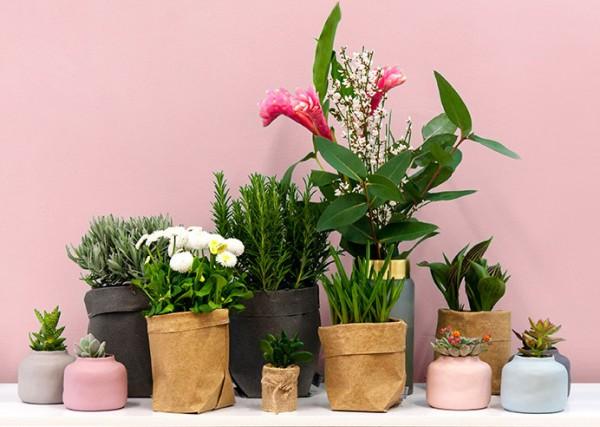 Fr-hlingsdeko-Beutel-Vasen