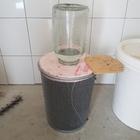 Kunstschwarm 1,3 kg mit standbegatteter Königin