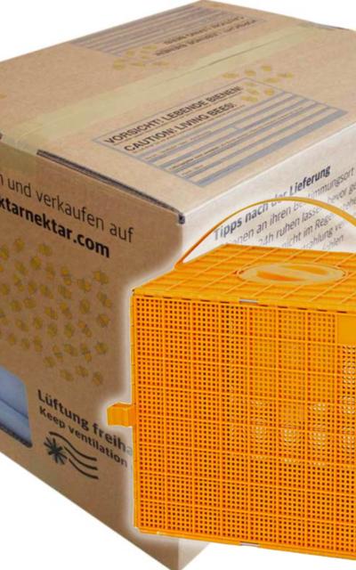 EXKLUSIV für Hektar Nektar Verkäufer: 12 x Kunstschwarm-Versandlösung