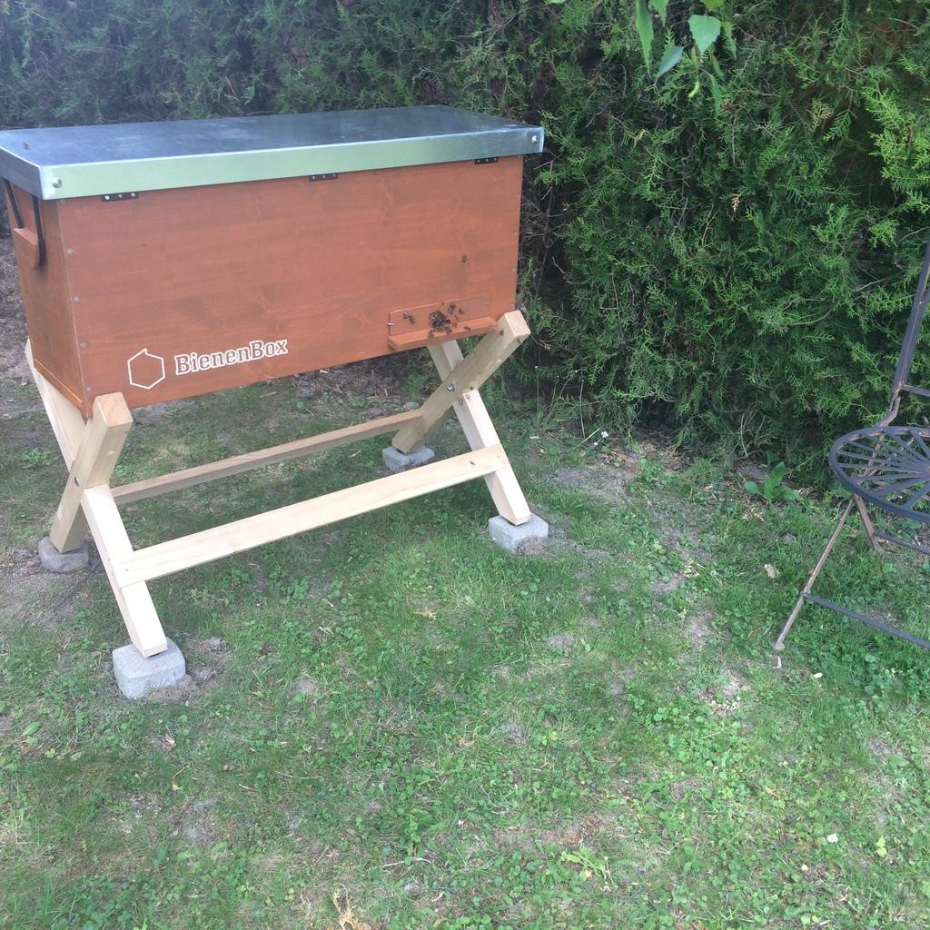 Bio Ableger Carnica mit Königin für Bienenbox und Citybox