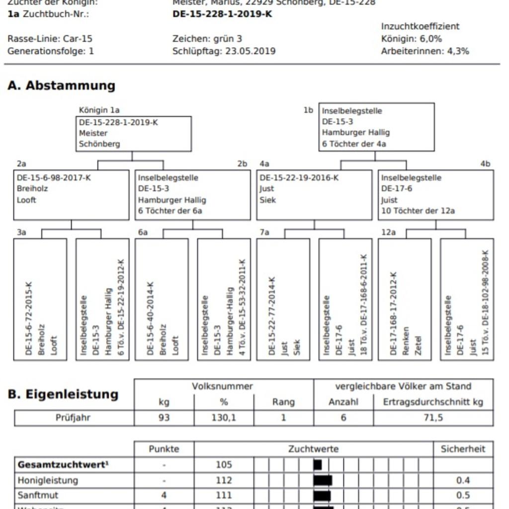 Belegestellenbegattete Königinnen aus 2022 Carnica Sklenar Linie 19/48