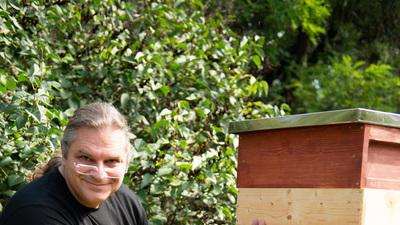 Alles bereit f%c3%bcr die bienen   es kann losgehen
