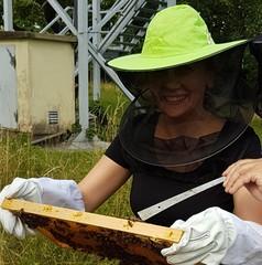 Bienenstand wien 2018 profil