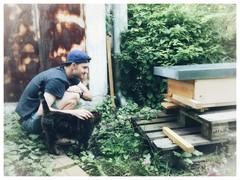 Bienen watche