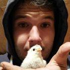 Lucas Eggarter