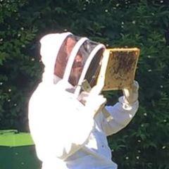 2020 02 12 08 08 37 schapener honig   fotos