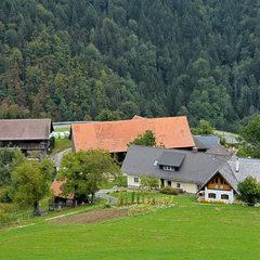 Bauernhof krammer krammermirtl hof2