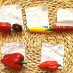 Scharfe-Chili-Sauce-mit-Tomatengeschmack-22