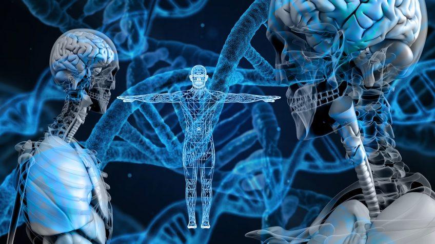 Lebenswichtige-Nahrungsbestandteile-Proteine