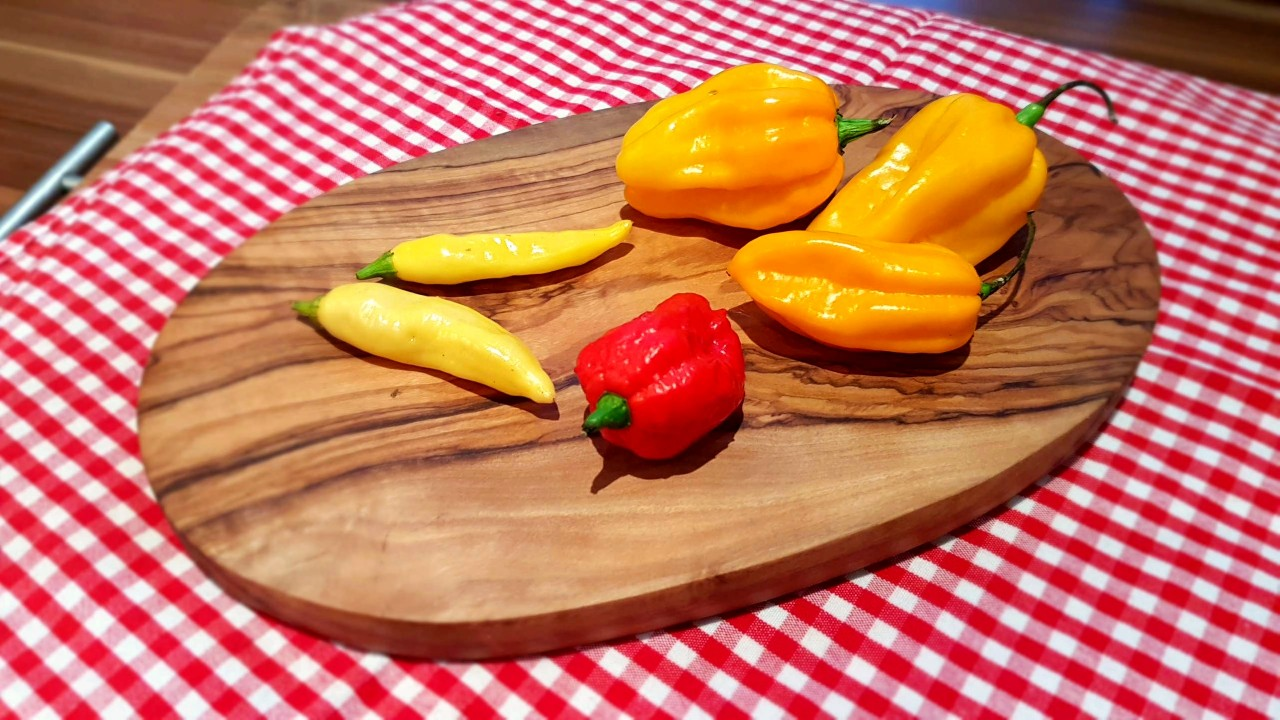 Gelbe-Chilischoten-als-Basis