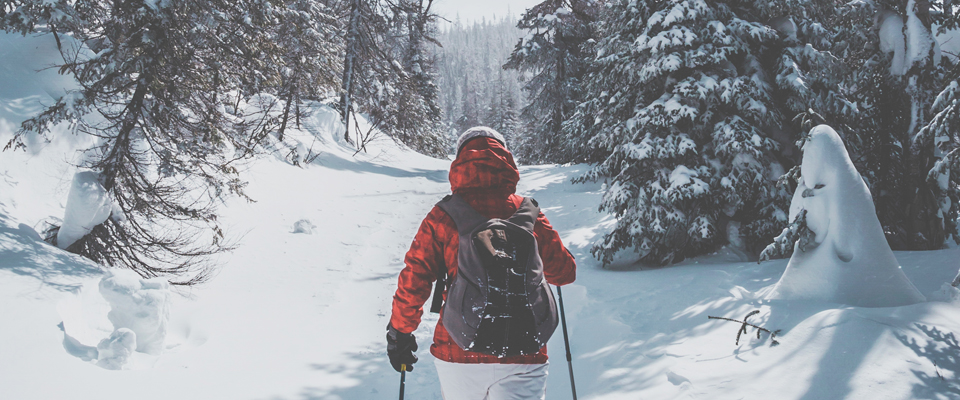 Outdoor winter sports – and how you can train for them at the club