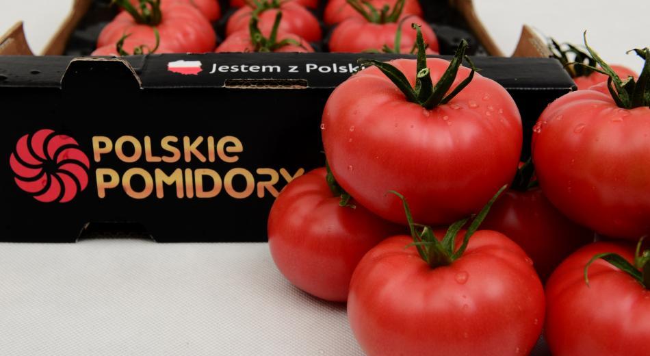 Polski Pomidory