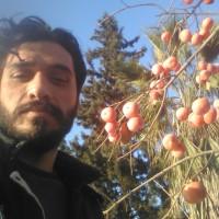 Aref Nasirahmadi