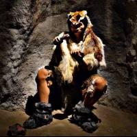 Muzeul Evoluției Omului în Paleolitic