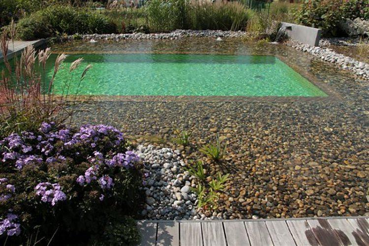 idees-piscine-bioteich