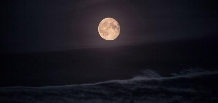 moonlight poem