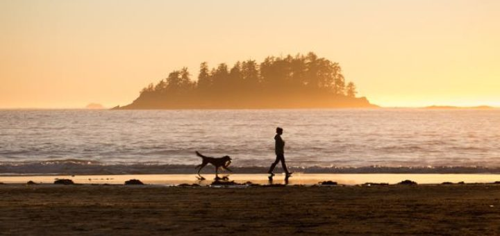 girl walking on beach with dog at sunset