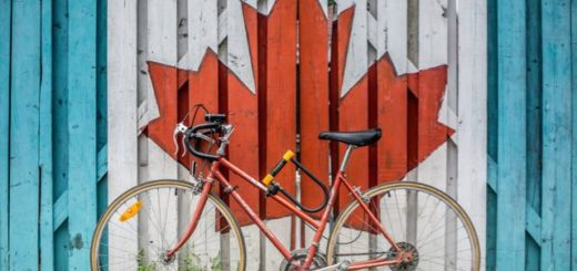 bicycle leaning on a wooden fence