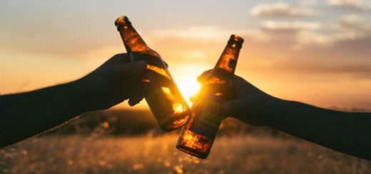 clinking beers in an open field at sunset