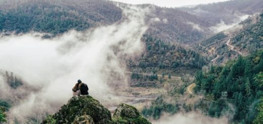 couple overlooking a valley with fog