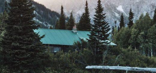 mountain lodge among pine trees