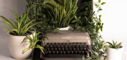 type writer remington with green potted plants
