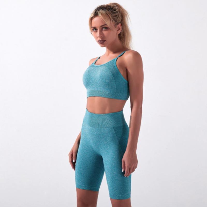 Fitness Set Αθλητικό Workout Σορτσάκι Ψηλόμεσο & Μπουστάκι Blue (A5022)Fitness Set Αθλητικό Workout Σορτσάκι Ψηλόμεσο & Μπουστάκι Blue (A5022)
