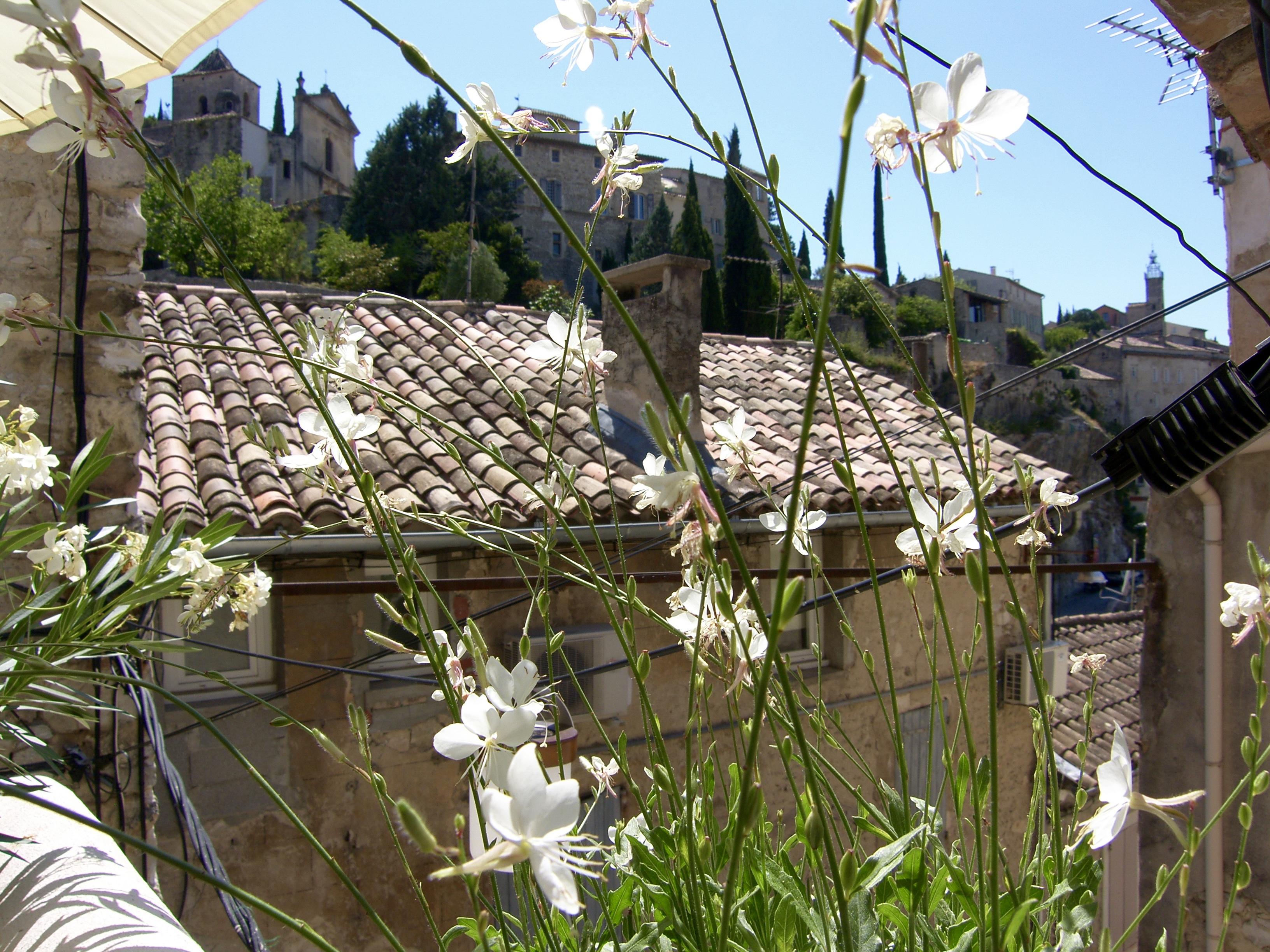 Holiday house Historisches Stadthaus im Zentrum von Vaison, nur einen Steinwurf vom Pont Romain entfernt (2512020), Vaison la Romaine, Vaucluse, Provence - Alps - Côte d'Azur, France, picture 32