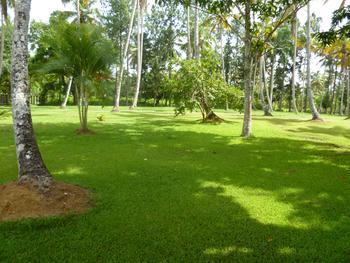 Natural landspace