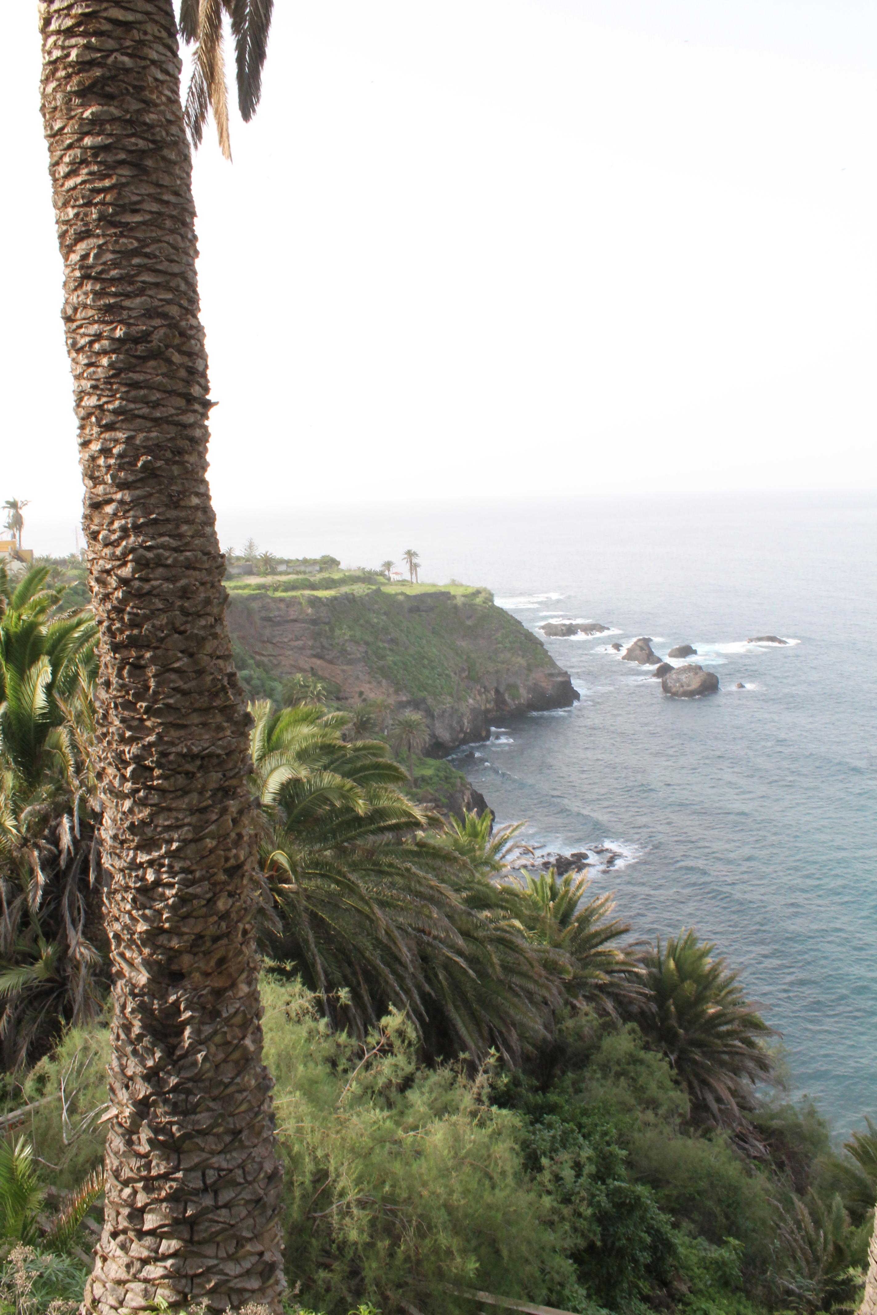 Appartement de vacances Das Geheimnis des Reisenden! (2411453), Candelaria (ES), Ténérife, Iles Canaries, Espagne, image 35