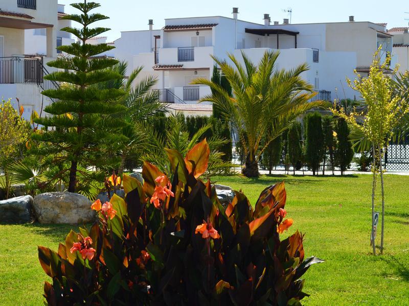 Apartamento en Planta baja, patio privado, orientación Oeste