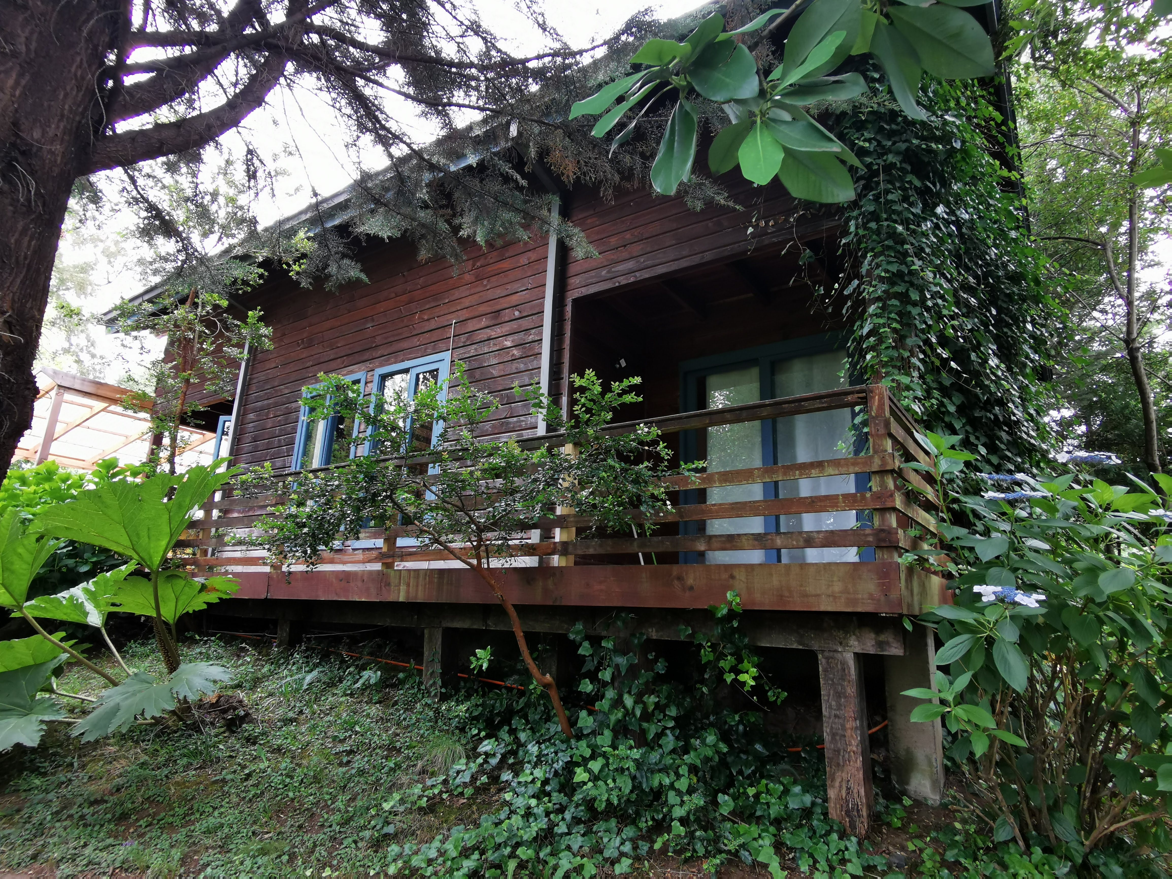 Pudomo cabin in Conaripe - with exclusive hot tub