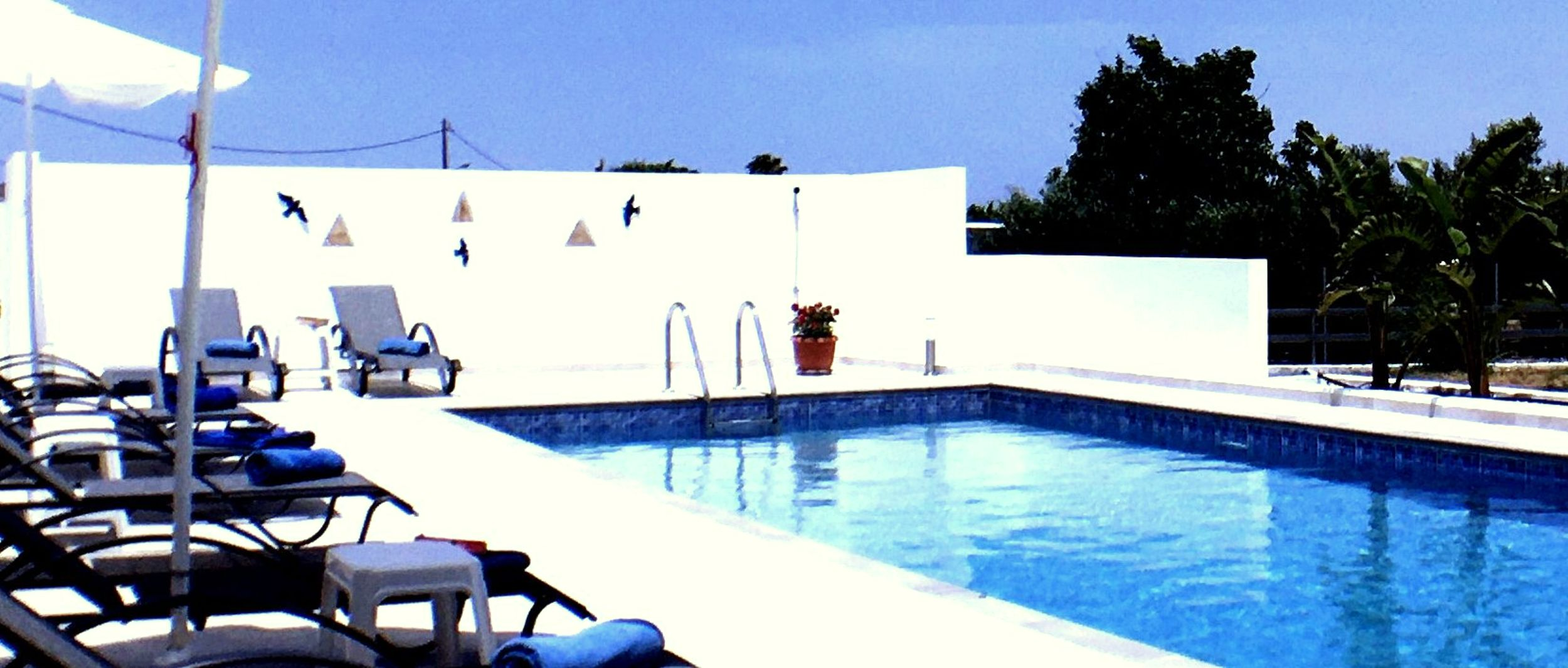 Holiday house Xenos Villa 4 - Luxusvilla mit privatem Pool in der Nhe des Meeres (2704174), Kos, Kos, Dodecanes Islands, Greece, picture 9