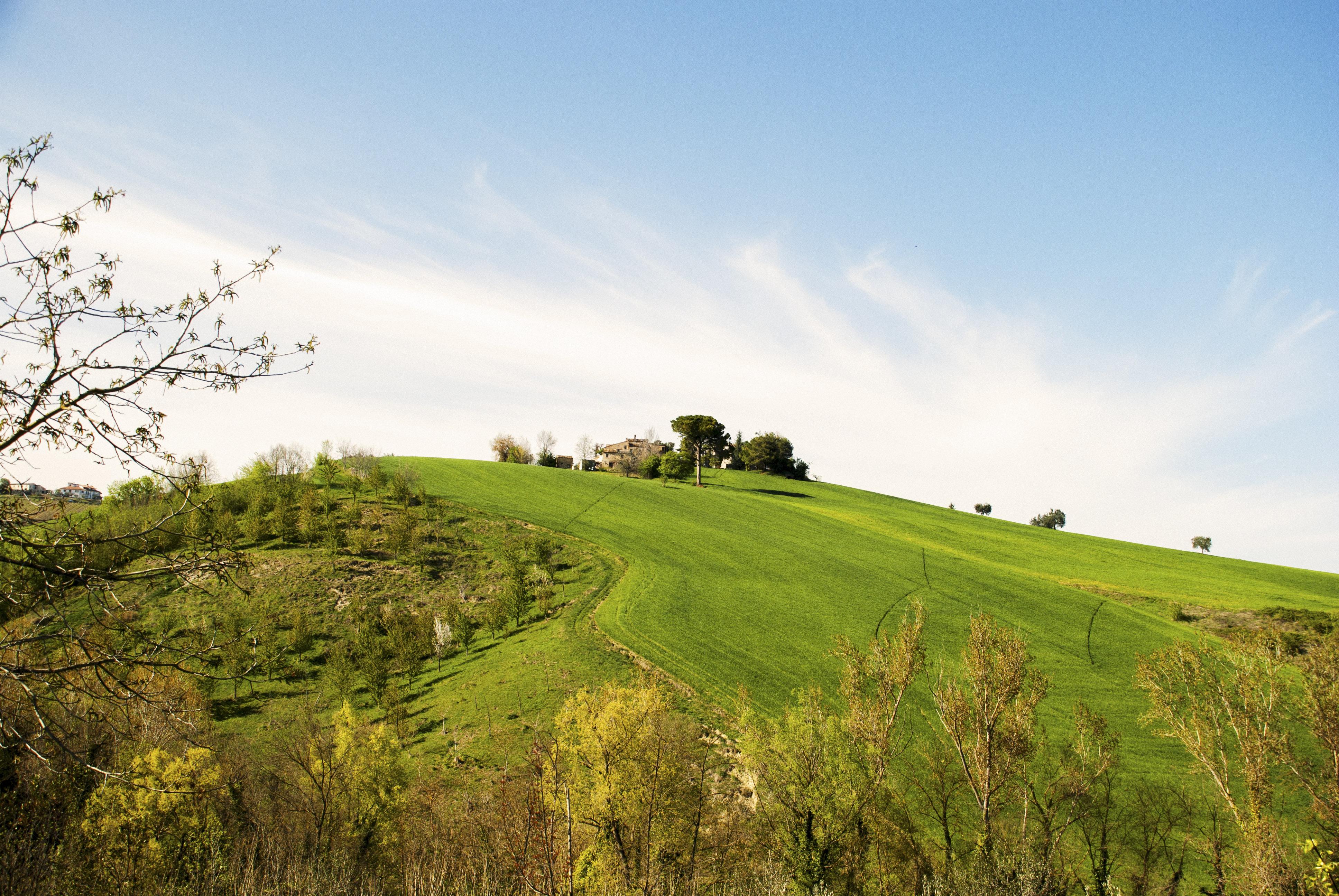 Ferienwohnung Il Casale di Giovanna - Rosemary (2123980), San Venanzo, Ascoli Piceno, Marken, Italien, Bild 21