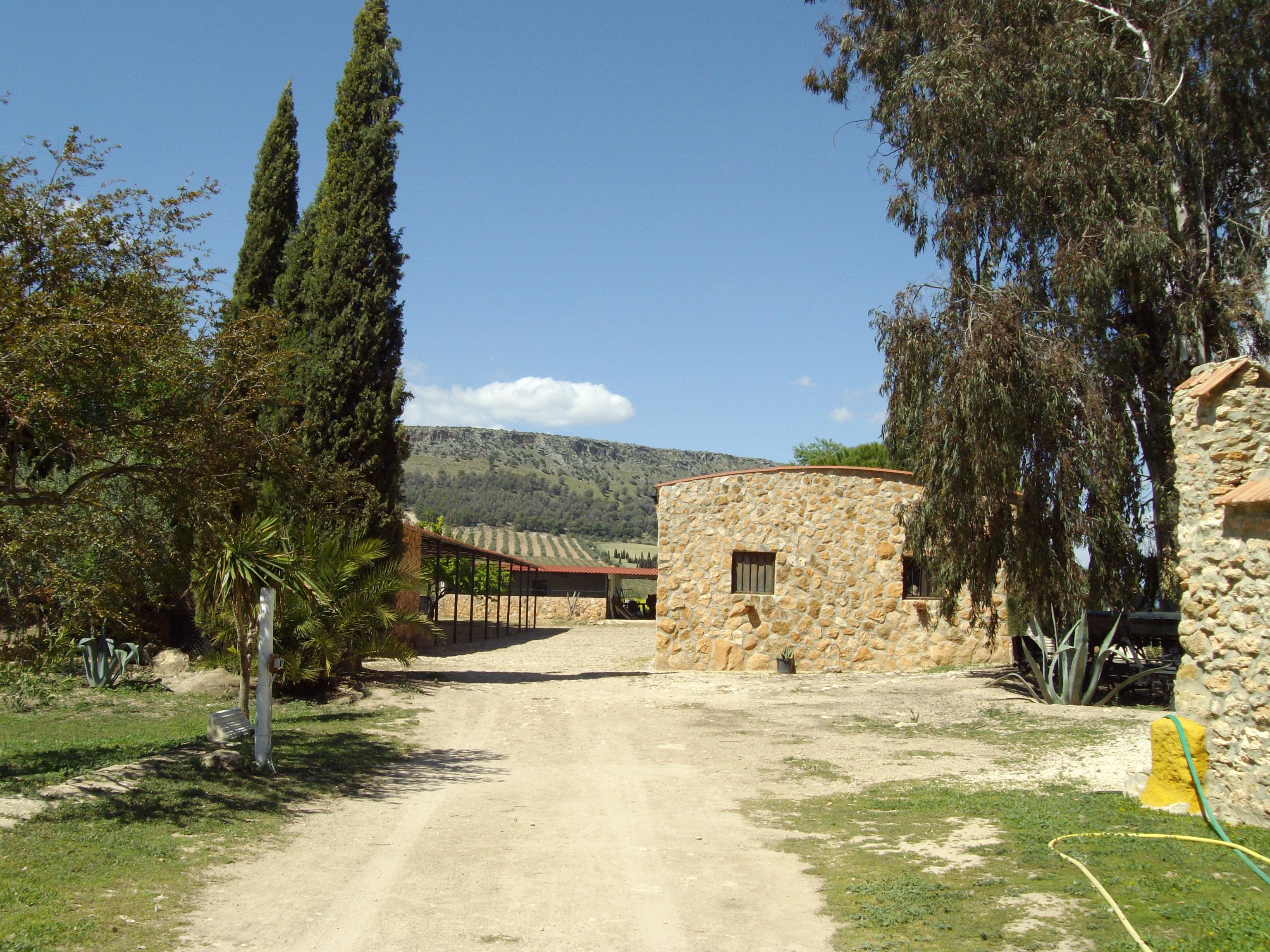 Ferienhaus House No 02 medium (2378813), Antequera, Malaga, Andalusien, Spanien, Bild 13