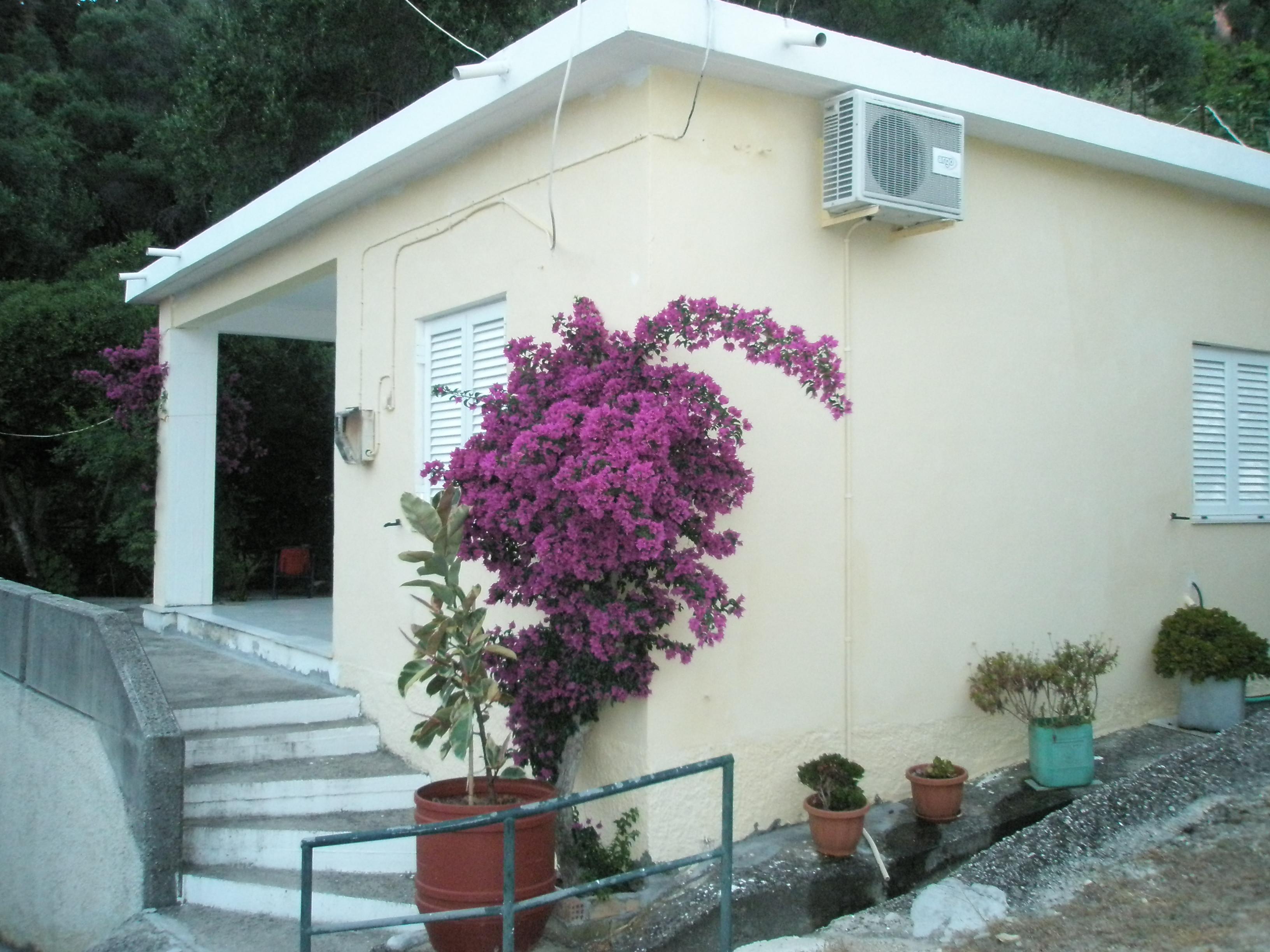 Maison de vacances Entspannte Ferien ein paar Schritte vom Meer entfernt und mit einem Gefhl der Privatsphre (2378713), Moraitika, Corfou, Iles Ioniennes, Grèce, image 5