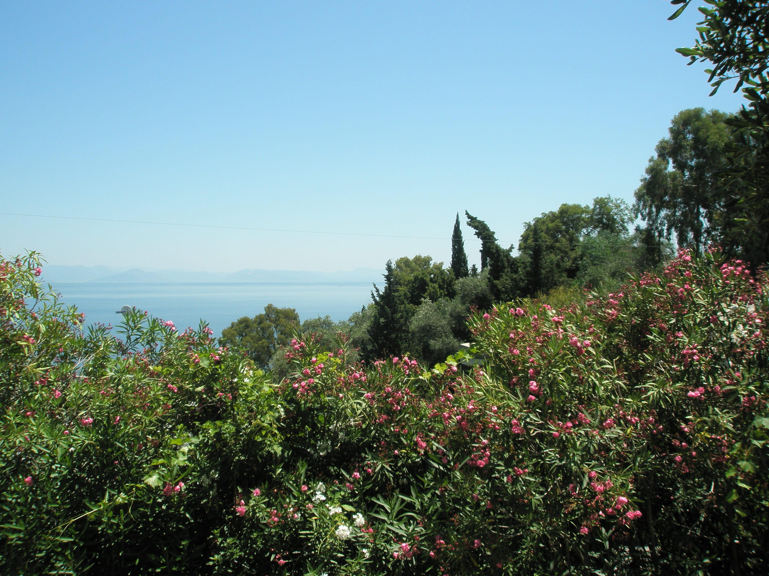 Maison de vacances Entspannte Ferien ein paar Schritte vom Meer entfernt und mit einem Gefhl der Privatsphre (2378713), Moraitika, Corfou, Iles Ioniennes, Grèce, image 4
