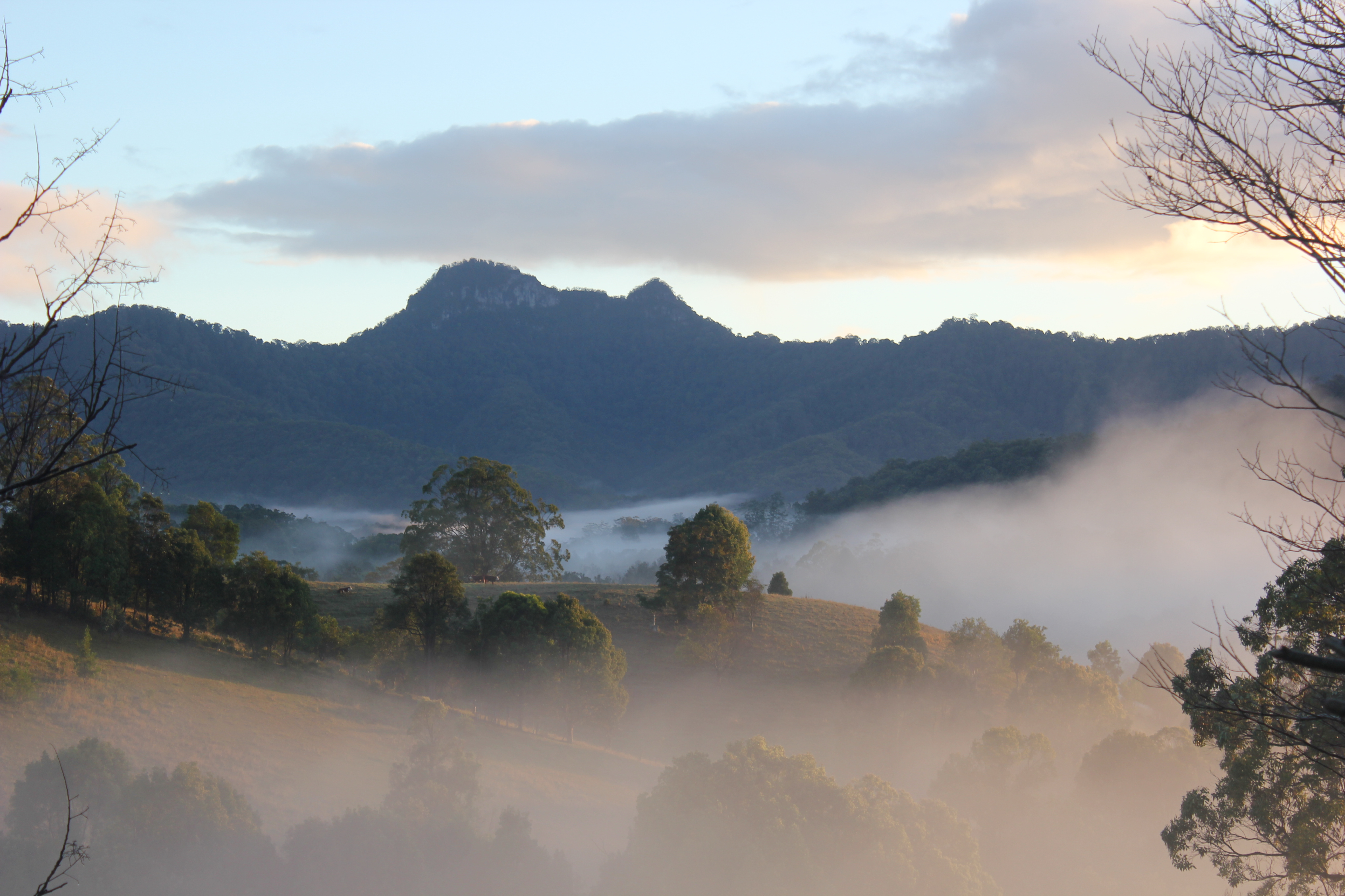 Ferienhaus Atemberaubend gelegenes Ferienhaus in Tweed Valley nördlichen NSW (2388886), Upper Crystal Creek, , New South Wales, Australien, Bild 9
