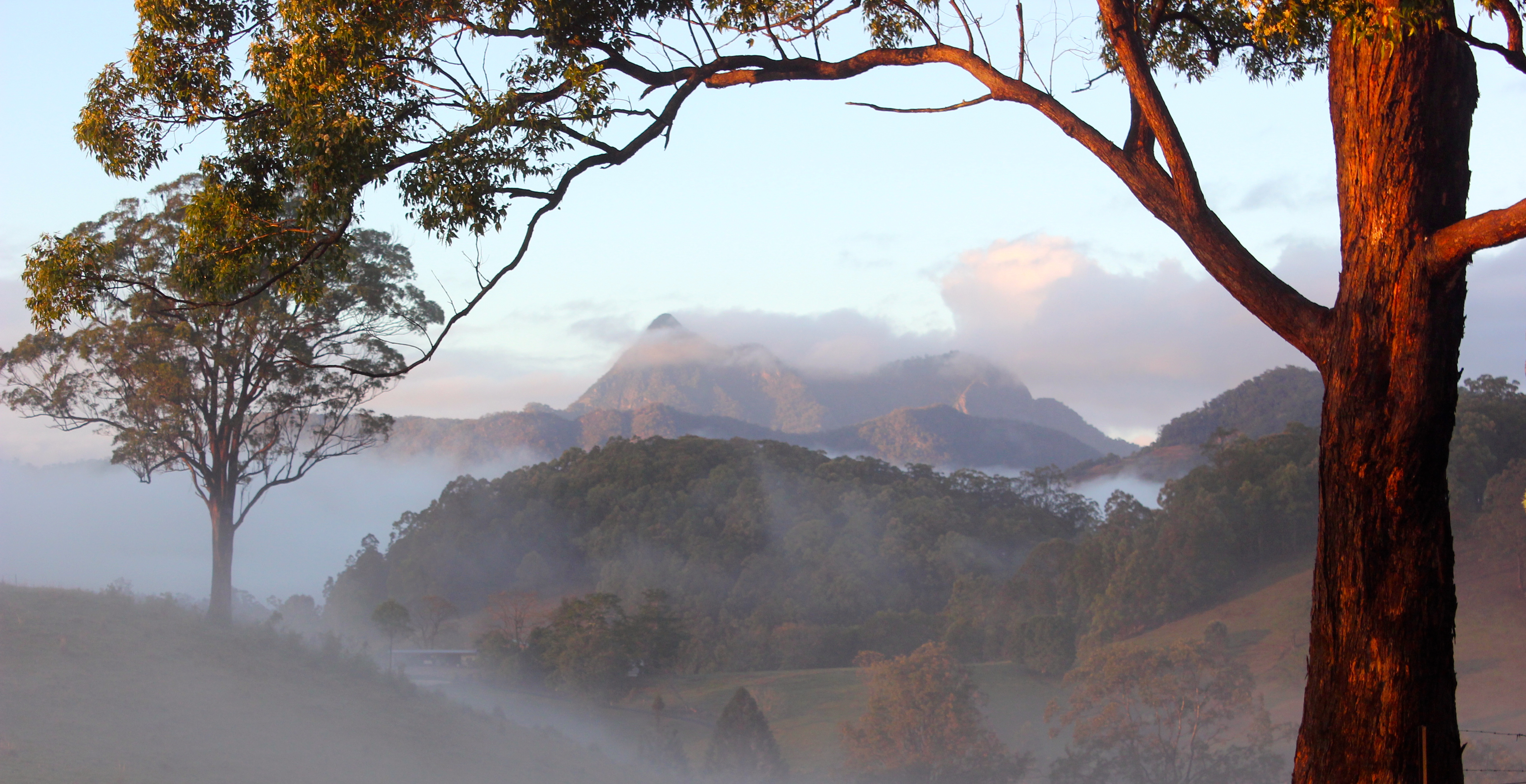 Ferienhaus Atemberaubend gelegenes Ferienhaus in Tweed Valley nördlichen NSW (2388886), Upper Crystal Creek, , New South Wales, Australien, Bild 8