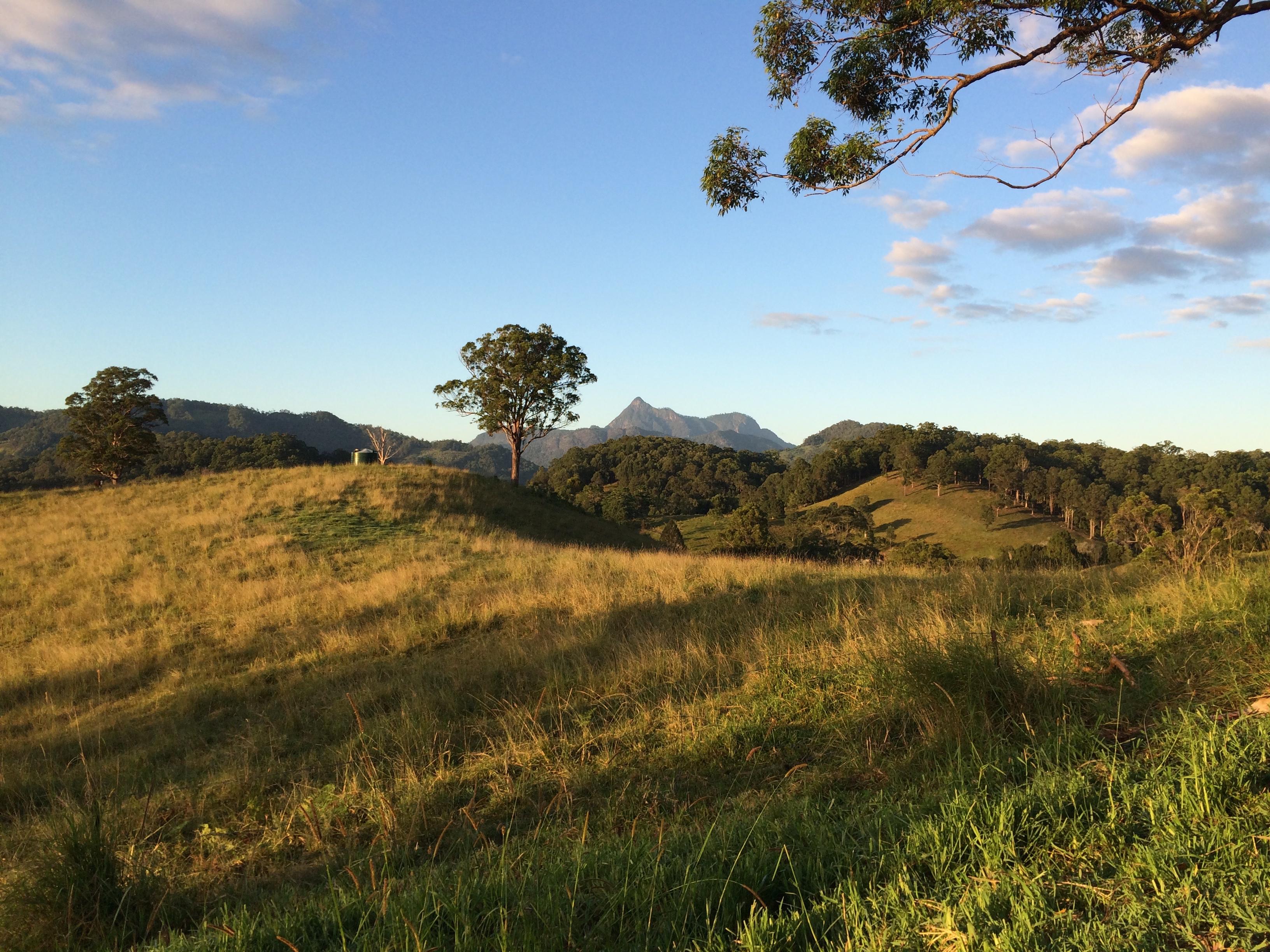Ferienhaus Atemberaubend gelegenes Ferienhaus in Tweed Valley nördlichen NSW (2388886), Upper Crystal Creek, , New South Wales, Australien, Bild 7