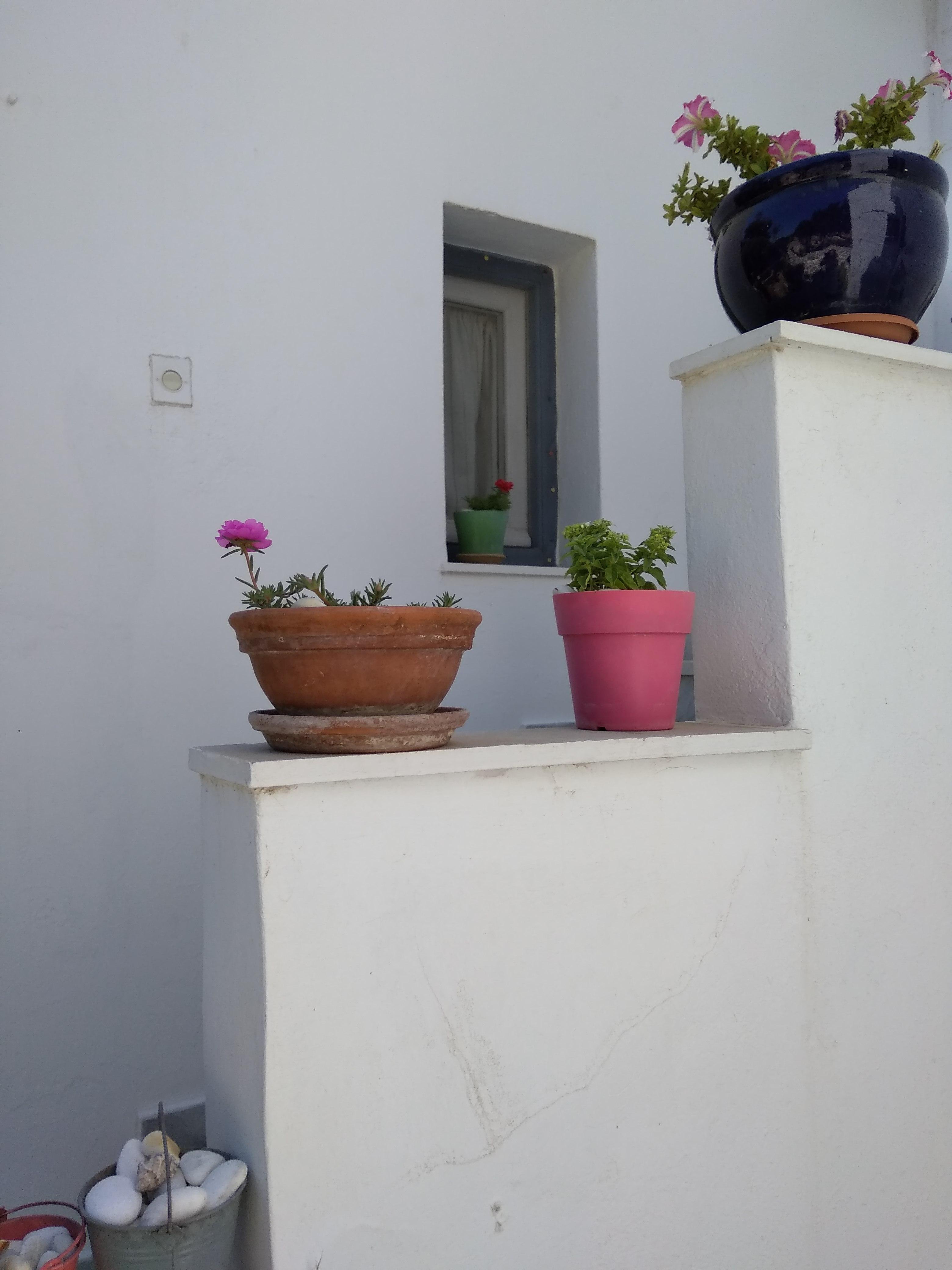 Ferienhaus Kikis Apartments sind private Apartments auf einer kosmopolitischen Insel in der gis (2633934), Paros, Paros, Kykladen, Griechenland, Bild 24