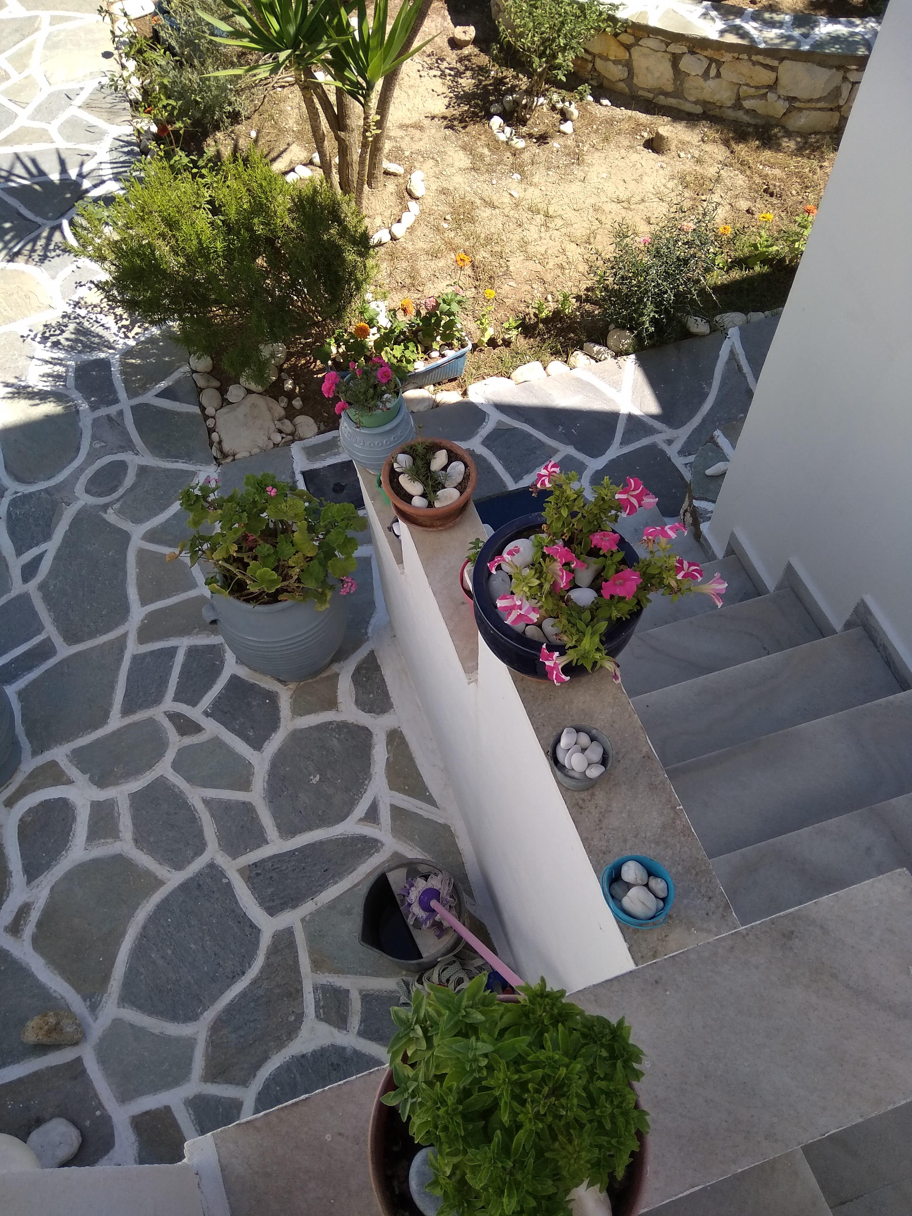 Ferienhaus Kikis Apartments sind private Apartments auf einer kosmopolitischen Insel in der gis (2633934), Paros, Paros, Kykladen, Griechenland, Bild 39