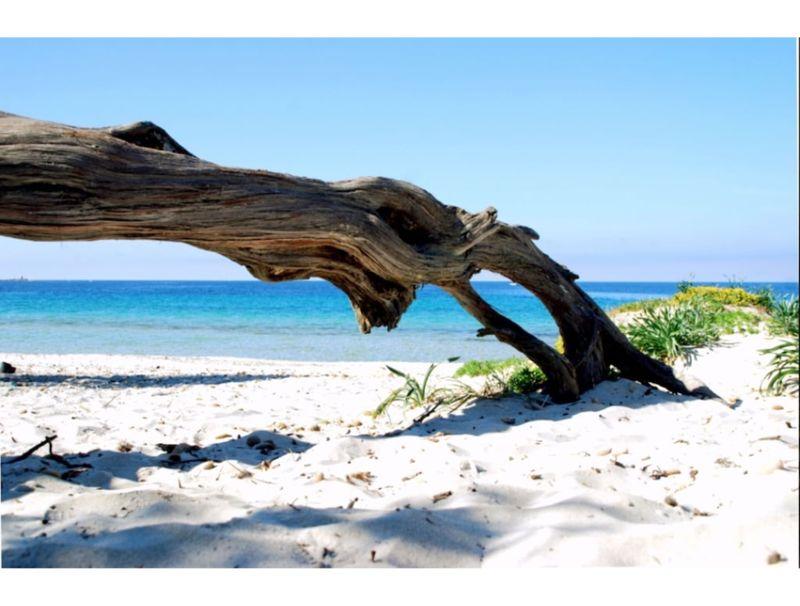 Alghero, Villa Arcadia nearby the beach for 11 people
