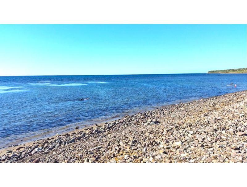 Sorso, Villa Tonnare with sea view for 10/12 people